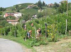 Cycling the Wine Villages of Piedmont Tour