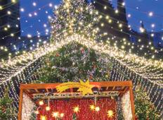 Rhine Holiday Markets (Basel to Cologne, 2020) Tour
