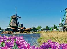 Tulips & Windmills (Amsterdam to Antwerp, 2020) Tour
