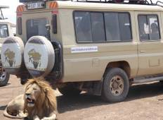 4 Day Lake Manyara / Serengeti National Park And Ngorongoro Crater Tour