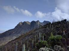5 DAYS RWENZORIS HIKING UGANDA Tour