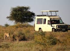 3 Days Budget Camping Safari Tour