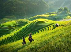 Sapa 3 Days 2 Nights Trekking Tour From Hanoi (2 Nights in Hotel) Tour