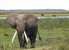 3 Days Samburu Big Five Tour