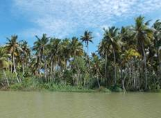 6 Day Best of Kerala Tour with Houseboat Stay Tour