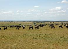 14- DAY East Africa and Ngorongoro Crater Safari Tour