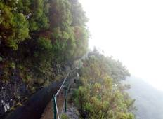 Madeira Best Walking Tours Tour