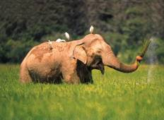 Sri Lanka uncovered with Wild Life, Nature, Adventure and Culture Tour