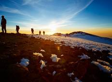 Climb Mt Kilimanjaro - 8 Day Machame Route Tour