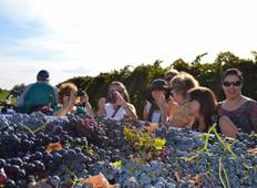 Cultural, Saint Patron Celebrations & Grape Harvest Experience in Abruzzo Tour
