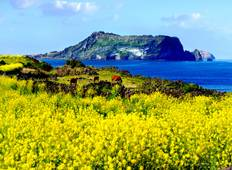 All inclusive 3D2N Private Tour of Jeju Island  Tour
