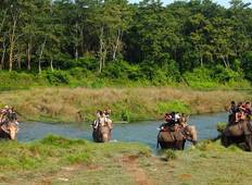 Jungle Safari In Nepal Tour