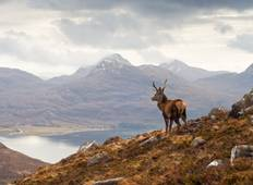 Orkney, Ullapool and the Northern Highlands from Edinburgh Tour