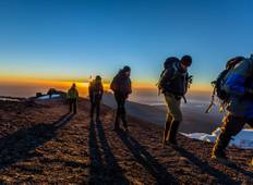 Kilimanjaro Climb, 8-Days Lemosho Route Tour