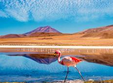 Chile Discover the Beauty Tour