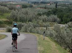 Cycling Emilia-Romagna\'s Culinary Wonders - Guided Tour Tour