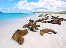 Galapagos Encounter - Archipel II (Itinerary B) Tour