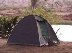 9 Days Budget Camping Safari  Tour