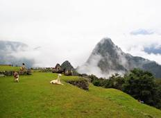 Short Inca Trail  to Machu Picchu 2 Days 2020 Tour
