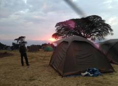 7 Days Tanzania Camping Safari Tour