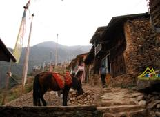 Langtang Valley & Tamang Heritage Trail Tour