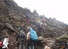 Kilimanjaro climb lemosho route 8 days Tour