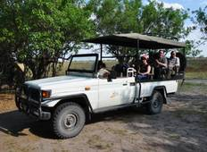 Moremi Hippo safari Tour