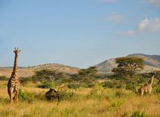 5 Days Walking Safari Tour