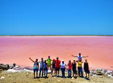 Pink sea + mud volcano, Rosario islands and National aviary Tour