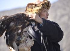 Discover nomadic eagle hunter, Mongolia Tour