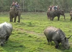 Mini Wildlife Tour Nepal 4 Days Tour
