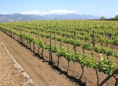 South and Sicily Wine & Cuisine Tour