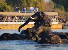 6-Day Magical Victoria Falls and Botswana Tour