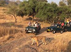 Golden Triangle Tour With Tiger (Ranthambore Tiger Safari) 3 Star Hotel Tour
