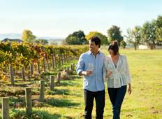Hunter Valley Winery Tour 1 DAY Tour