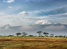 "Mount Kilimanjaro (highest in Africa) 6 days Machame route ""whiskey route\"" Tour"