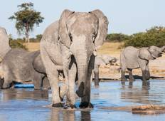 3 Nights 4 Days Victoria Falls And Chobe Package Tour