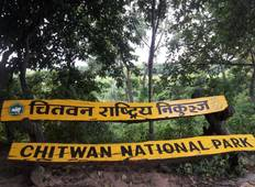 Chitwan Jungle Safari Tour - 3 Days  Tour