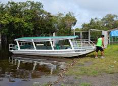 3 days and 2 nights in the Amazon Jungle with fan! Tour