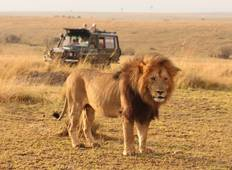 3 Days, 2 Nights Masai Mara Group Joining Safari from Nairobi Tour