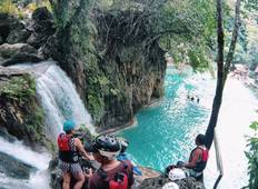 City Tour + Oslob Whale Shark Watching + Kawasan Falls Canyoneering + Moalboal Island Hopping (without accommodation) Tour