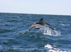 Puerto Madryn,  Ecological Sanctuary Tour