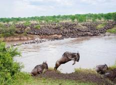 6 Days, 5 Nights Tanzania Budget Mid-range safari tour 1750 usd Tour