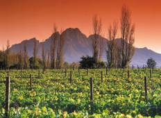 Cape Winelands and the Garden Route for Wine Lovers - 5 Days Tour