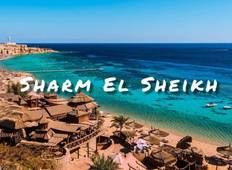 Trip of a lifetime Visiting Cairo, Sharm el sheikh, Dahab Tour