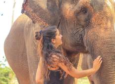 15 days Ethical Elephants & Hill Tribe Experience - Chiang Mai Tour