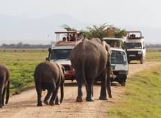 6 Days Budget Camping Safari Tour