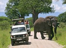 7-Days Tanzania Safari Tour