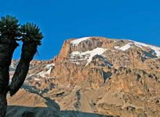 6 Days 5 Nights Kilimanjaro Trekking Via Marangu Route Tour