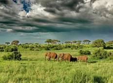 6 days  Luxury Masailand Safari Tour